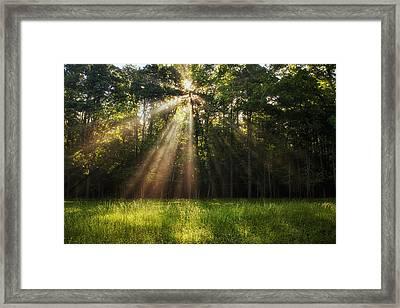 Morning Radiance Framed Print by Andrew Soundarajan