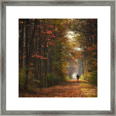 Morning Run Framed Print by Michele Steffey