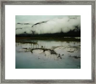 Morning Stillness Framed Print by Gun Legler