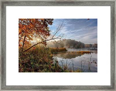 Morning Sun Framed Print by Daniel Behm
