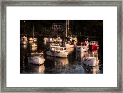 Morning Sun On Perkin's Cove Framed Print by Jerry Fornarotto