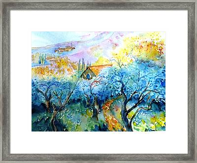 Morning Sunrise In A Tuscan Olive Grove Framed Print by Trudi Doyle