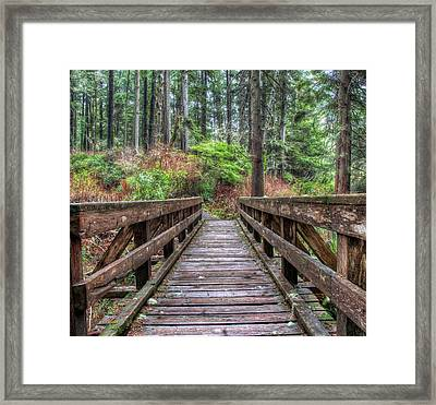Morning Walk Framed Print by James Wheeler