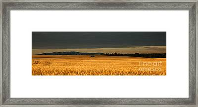 Morning's Glow Framed Print by Beve Brown-Clark Photography