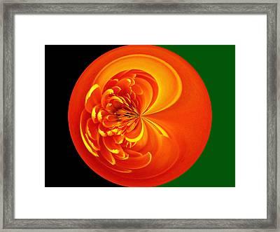 Morphed Art Globe 19 Framed Print by Rhonda Barrett