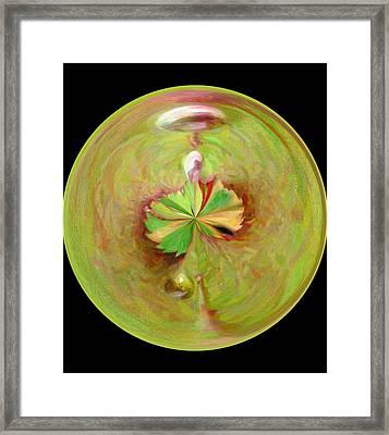 Morphed Art Globe 21 Framed Print by Rhonda Barrett