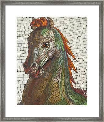 Mosaic Horse Framed Print by Marcia Socolik