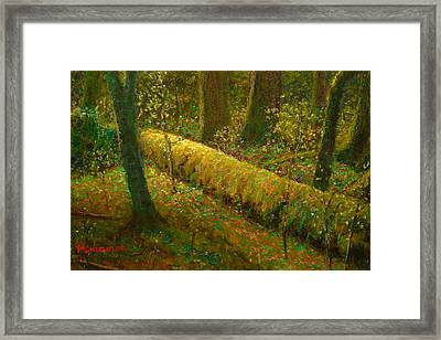 Moss Framed Print by Terry Perham