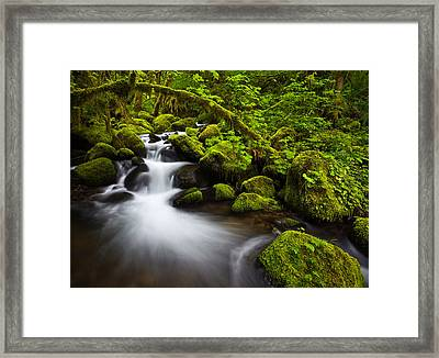Mossy Arch Cascade Framed Print by Darren  White