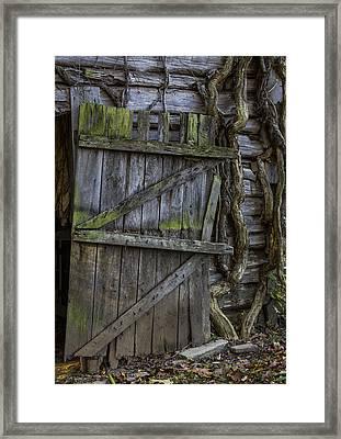 Mossy Barn Door Framed Print by Amber Kresge