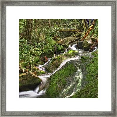 Mossy Creek Framed Print by Debra and Dave Vanderlaan