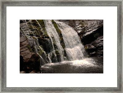 Mossy Drop Framed Print by Greg and Chrystal Mimbs