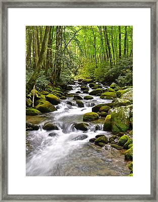 Mossy Mountain Stream Framed Print by Frozen in Time Fine Art Photography