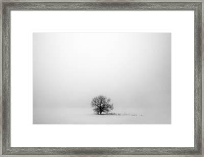 Mostly White Framed Print by Todd Klassy