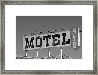 Motel For The Birds Framed Print by Peter Tellone