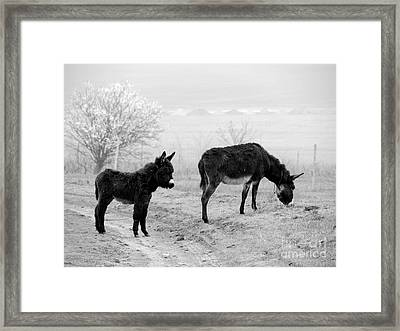 Mother And Child Framed Print by Gabriela Insuratelu