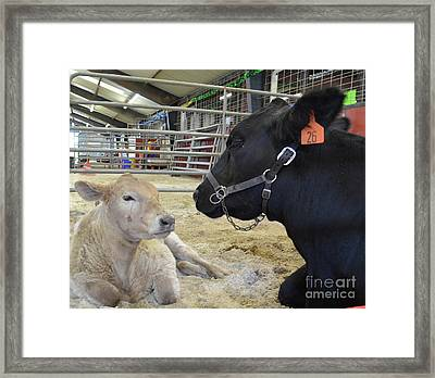 Mother And Child Hand Embroidery Framed Print by To-Tam Gerwe