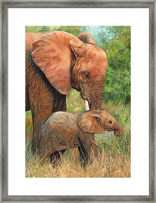 Mother Love 2 Framed Print by David Stribbling