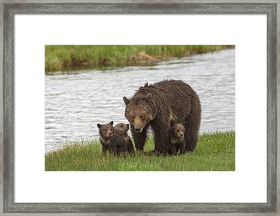 Mother's Day Framed Print by Sandy Sisti