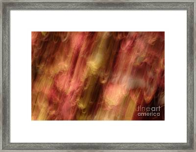 Motion Series - 218 Framed Print by Paul W Faust -  Impressions of Light
