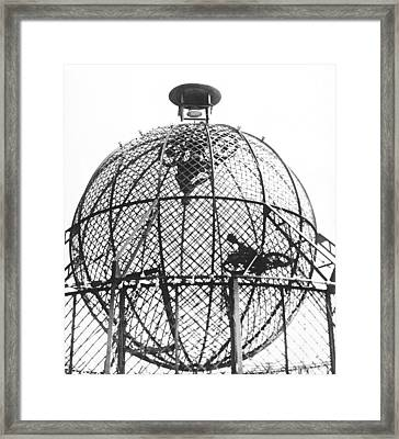 Motorcycle Stunts In A Ball Framed Print by Underwood Archives
