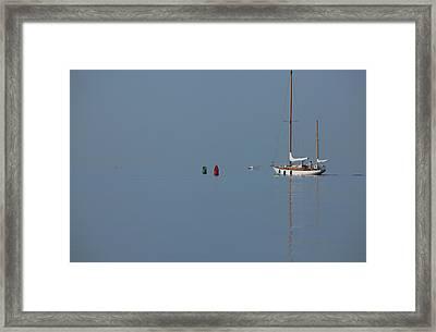 Motoring Sail Framed Print by Karol Livote