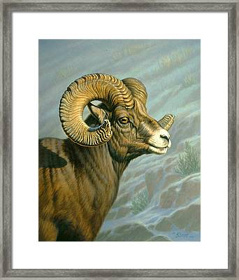 Mount Everts Ram Framed Print by Paul Krapf