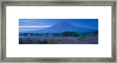 Mount Fuji Japan Framed Print by Panoramic Images