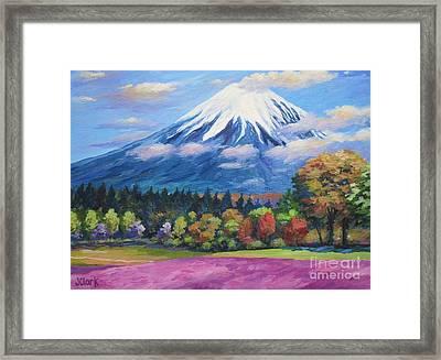 Mount Fuji Shibazakura Framed Print by John Clark