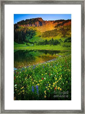 Mount Rainier Lake Framed Print by Inge Johnsson