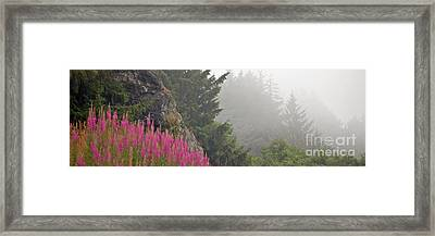 Mountain Fog Framed Print by Chuck Flewelling