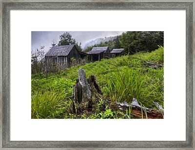 Mountain Mists At Le Conte Framed Print by Debra and Dave Vanderlaan