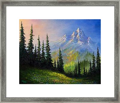 Mountain Morning Framed Print by C Steele