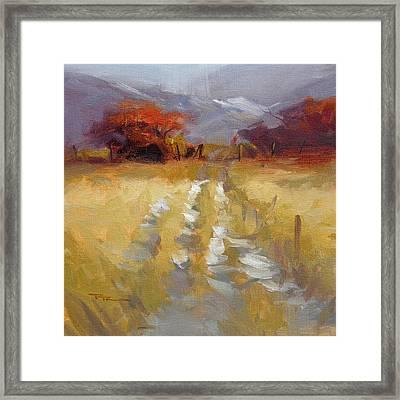 Mountain Path Framed Print by Richard Robinson