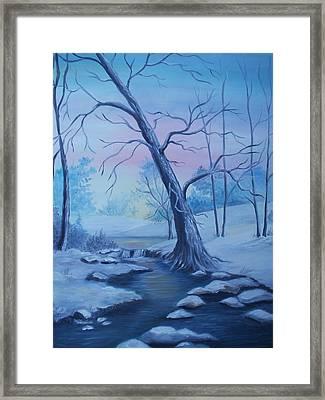 Mountain Stream  Framed Print by Glenda Barrett