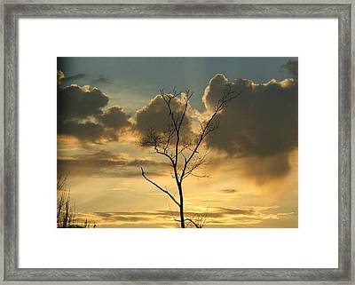 Mountain Sunset Four Framed Print by Paula Tohline Calhoun