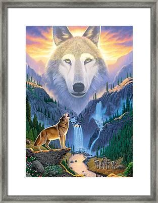 Mountain Wolf Framed Print by Chris Heitt