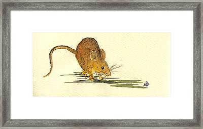 Mouse Framed Print by Juan  Bosco