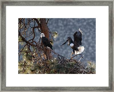 Move Over Framed Print by Mike Dawson