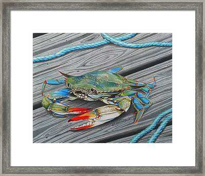 Mr. Jimmy Framed Print by Karen Rhodes