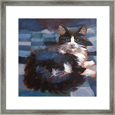 Mr. Tuxedo Framed Print by Alice Leggett