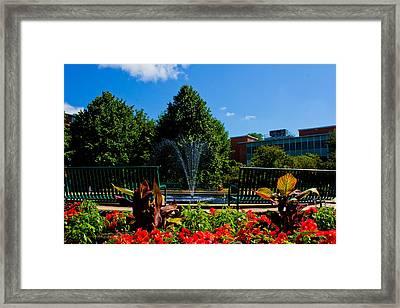 Msu Water Fountain Framed Print by John McGraw
