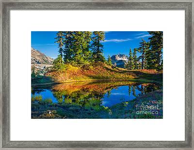 Mt Baker Tarn In Fall Framed Print by Inge Johnsson