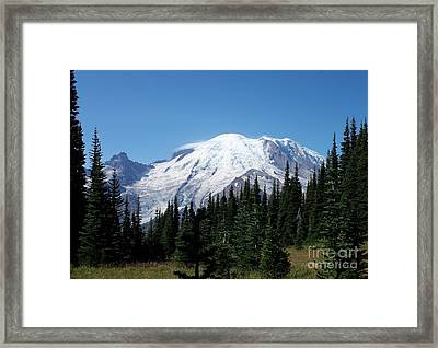 Mt. Rainier In August Framed Print by Chalet Roome-Rigdon