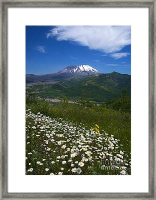 Mt. St. Helens View Framed Print by Mike Dawson