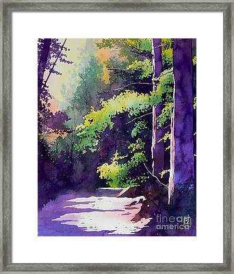 Muir Woods Framed Print by Robert Hooper