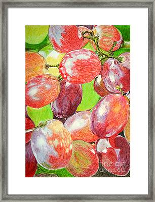Multi Coloured Grapes Framed Print by Yvonne Johnstone