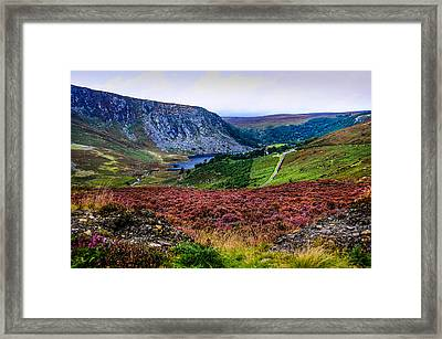 Multicolored Carpet Of Wicklow Hills. Ireland Framed Print by Jenny Rainbow