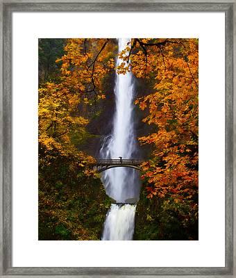 Multnomah Falls Color Framed Print by Darren  White