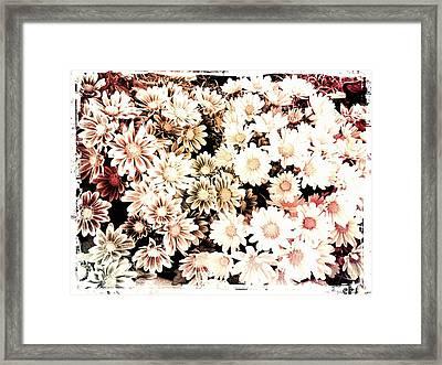 Mum Framed Print by Chasity Johnson